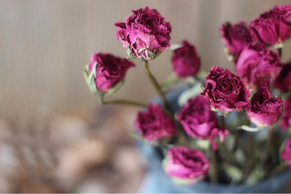 лепестки розы в косметике
