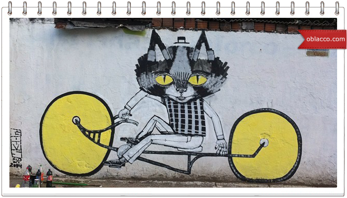 кошачий стрит арт