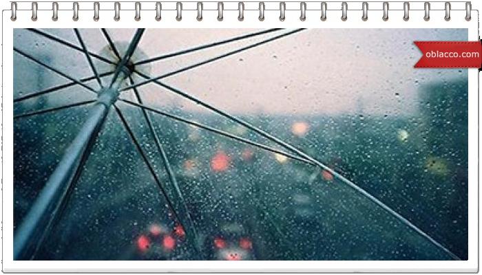 шаблон дождь зонт весна