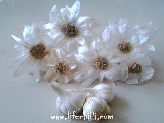 цветы из чеснока