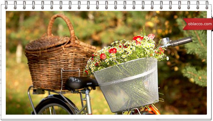 Корзинки велосипедные, плетеные с цветами