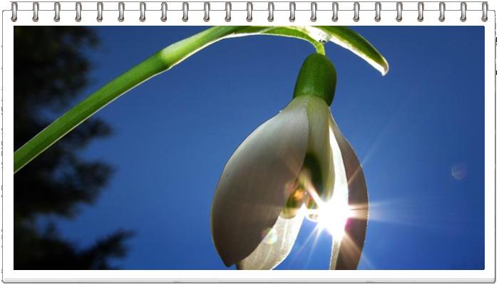 Весна - это