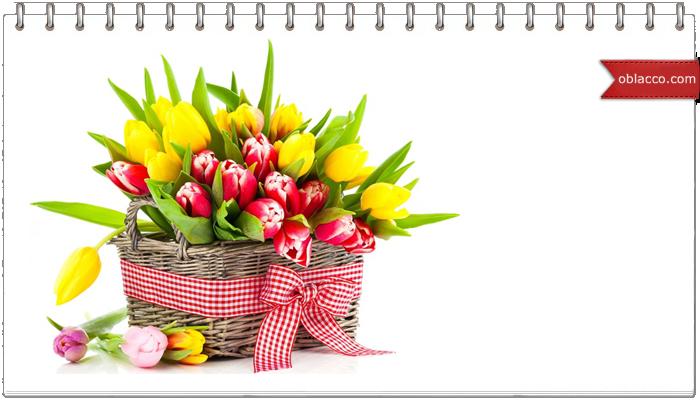Доставка цветов в Киеве: быстро и экономно
