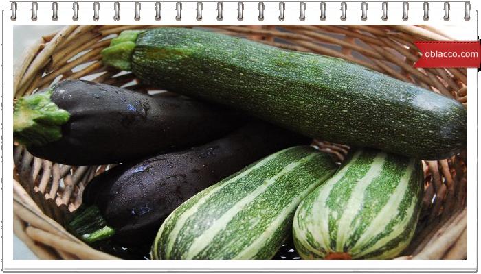 О вкусных и полезных овощах. Кабачки на летнем столе