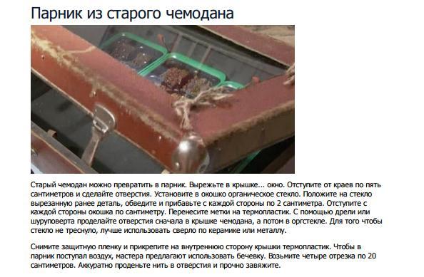 парник в старом чемодане