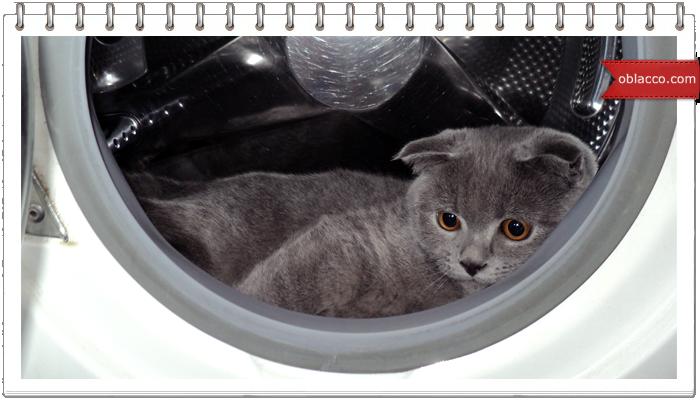 Характерные признаки поломки стиральной машины