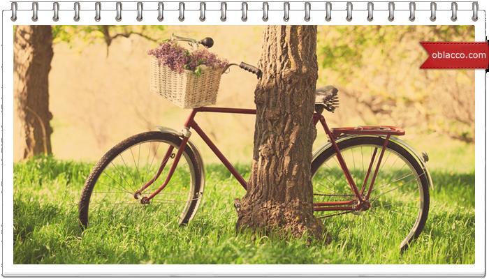 velosiped