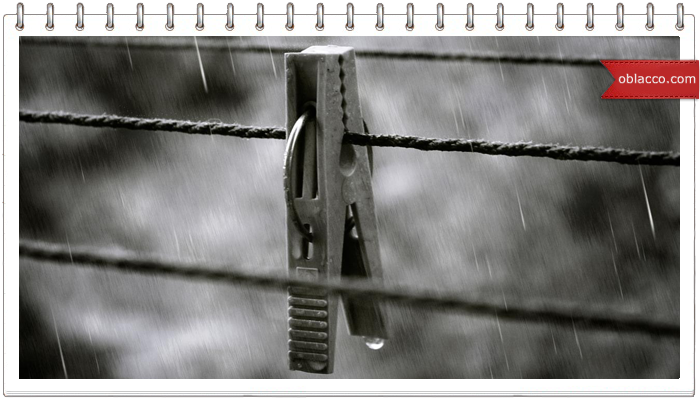 дождь лето фото