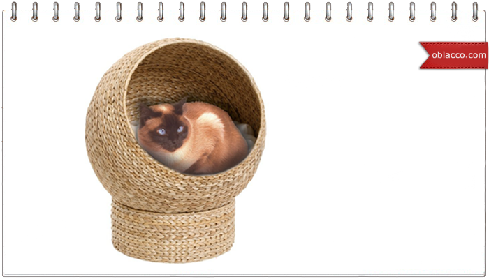 домик для кота плетение из газет