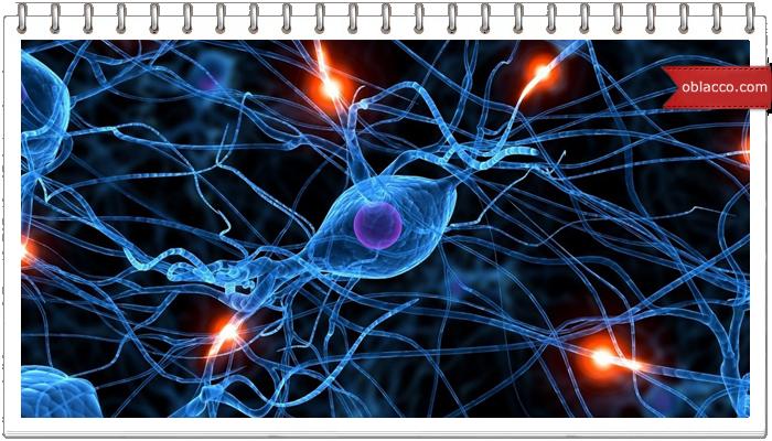 Все болезни от нервов