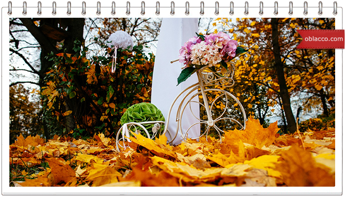Осенняя свадьба: за и против