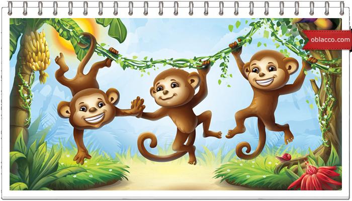 Про обезьян