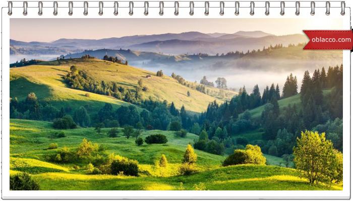 Отпуск в Карпатах – выбираем виллы