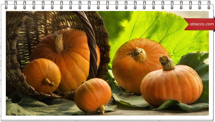 4 пикантные блюда из тыквы на Хэллоуин