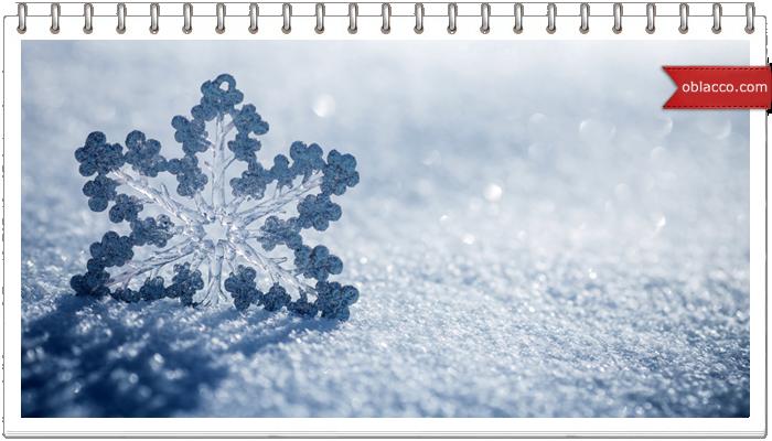 Снежинка из еловых веточек
