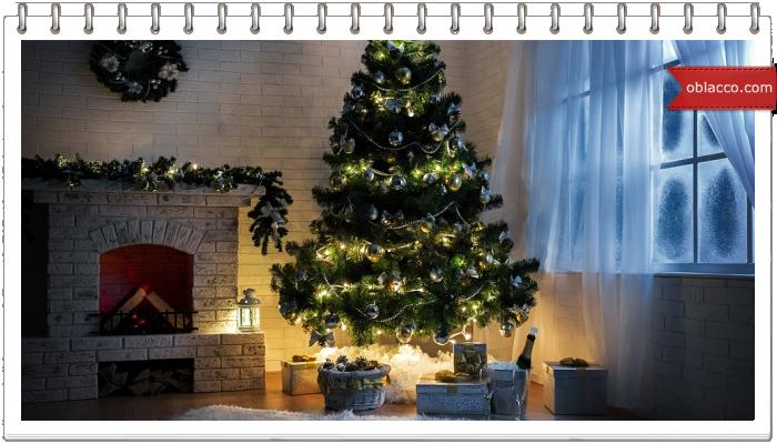 Датские елки — одно из лучших украшений новогоднего праздника