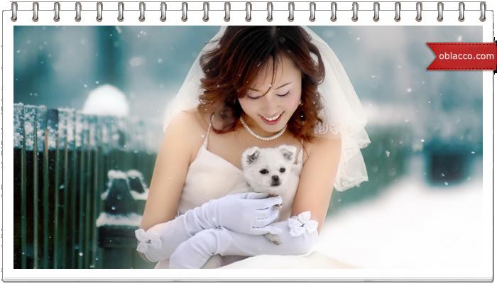 Феерическая свадьба из роз в самом сердце зимней сказки