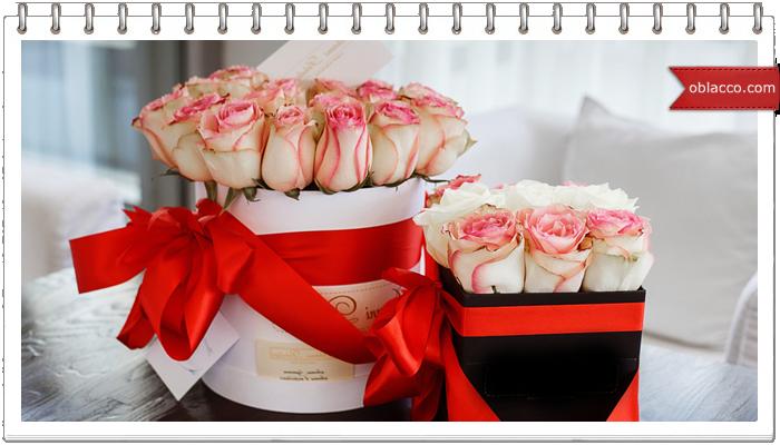 Заказ и доставка цветов — недорого и круглосуточно