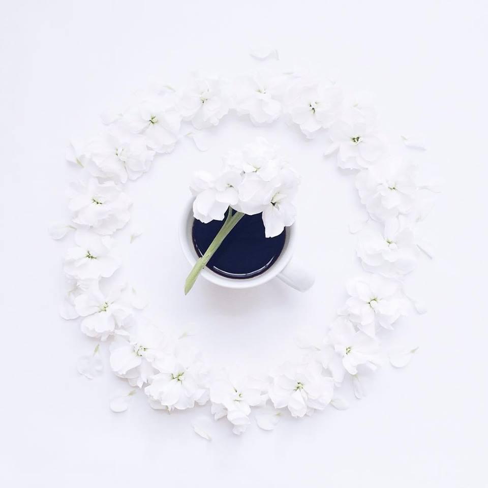 kofe rozi
