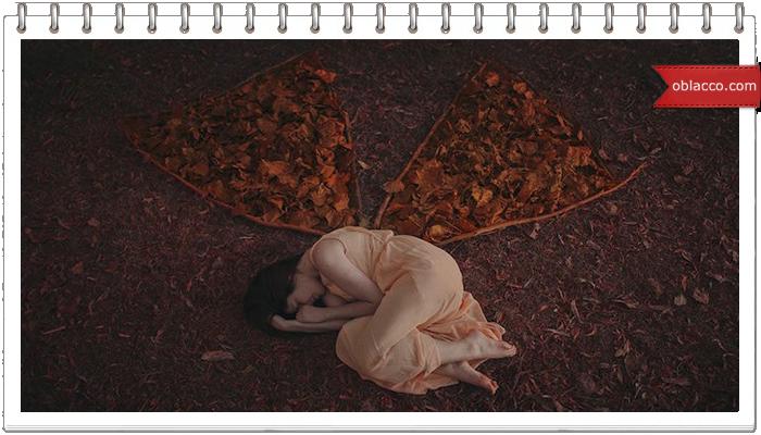 Бабочки Иосиф Бродский