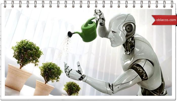 Современные роботы в нашем мире