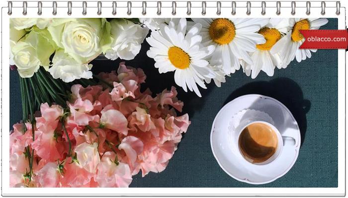 Цветы - ломтик лета на столе