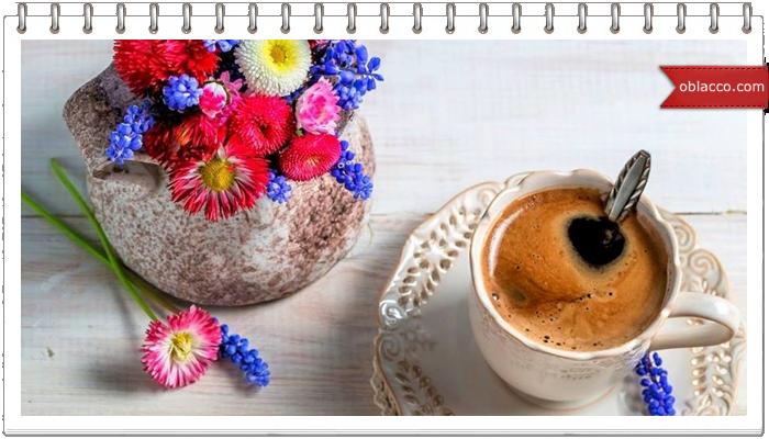 Заповiт кавомана