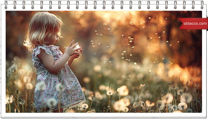 Блог двухлетней мисс Кейти