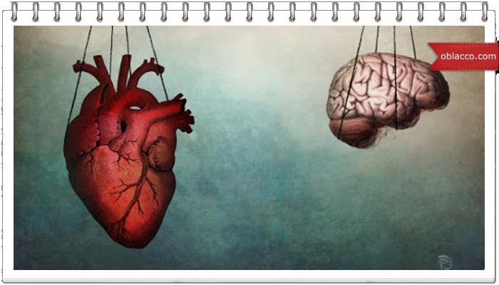 Хочешь познать голову - познай сердце
