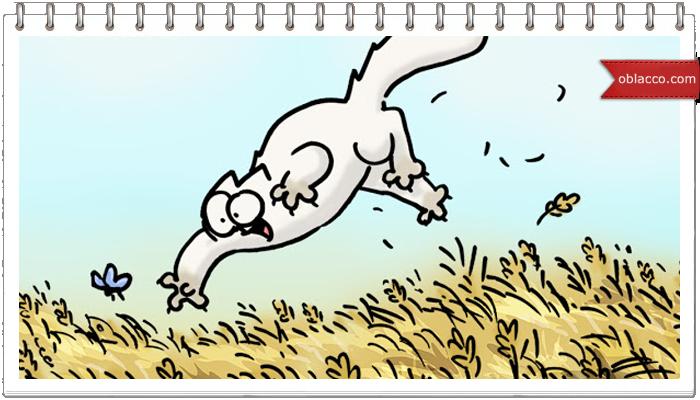 Кот Саймона. Прогулка на лугу