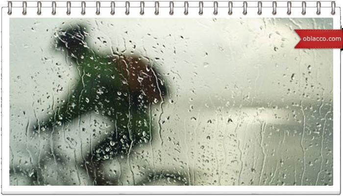 Велопрогулка под дождем