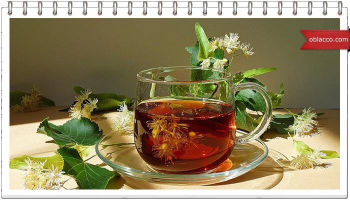 Вкусная фитотерапия – натуральное лекарство с широким терапевтическим эффектом