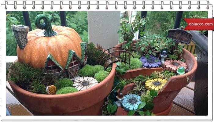 Как сделать сад в старом керамическом горшке. Идеи для дачи