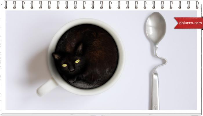 Кофе расширяет сознание