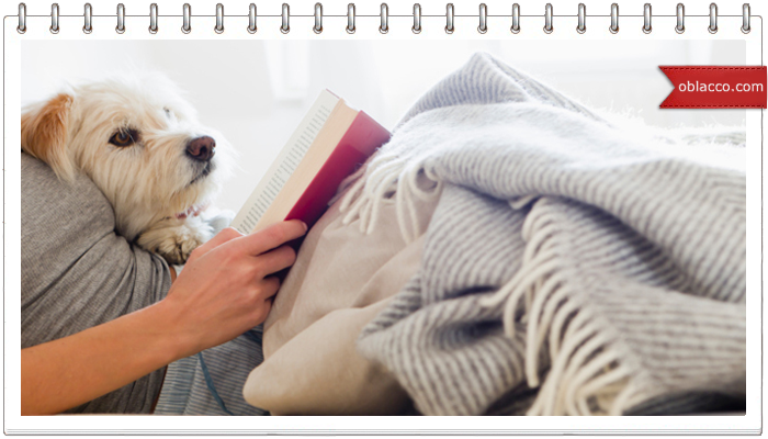 Медитация с уточками, собака отдыхает
