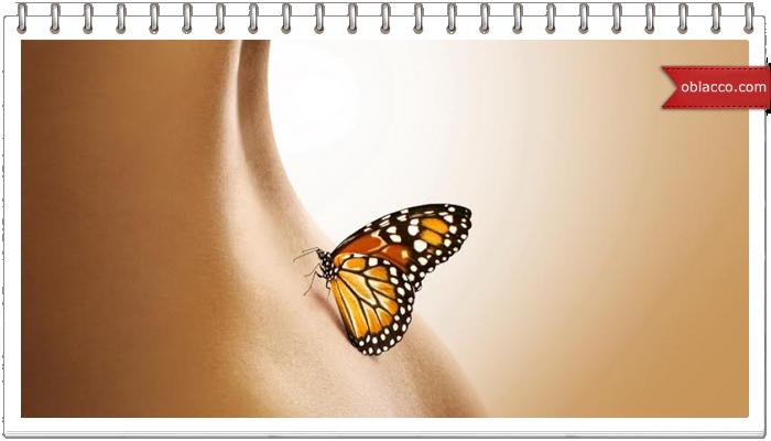 Ищите бабочку