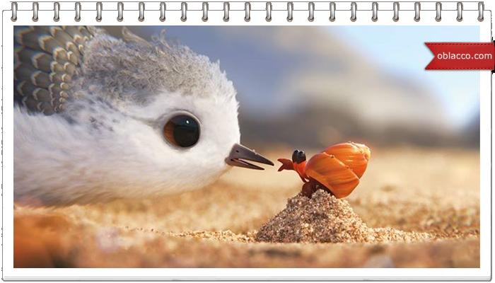 Мультфильм с глубоким смыслом от Pixar