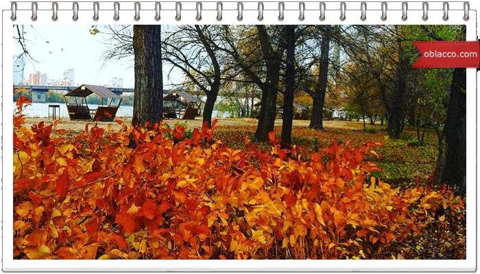 Осенняя зарисовка. Закругляюсь с велопроулками