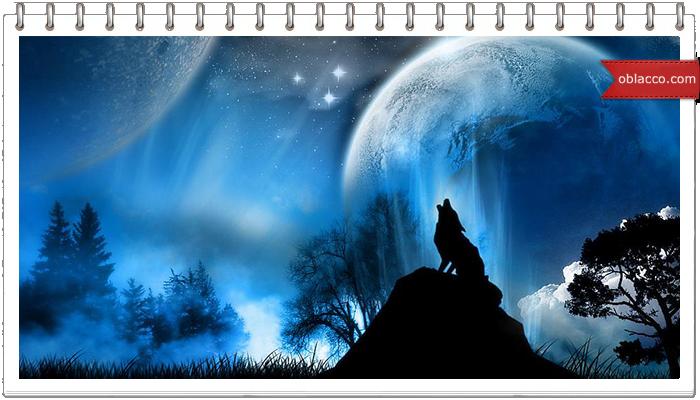 В ночь на 12 января будет полнолуние Волка. Не пропустите важный вечер!