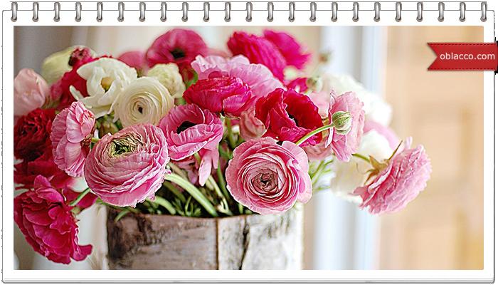 Искусство флористики. Цветы и букеты в Казахстане