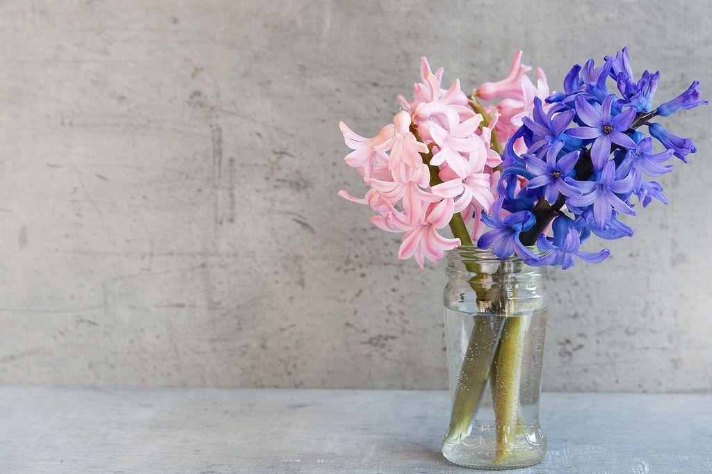 ваза гиацинт