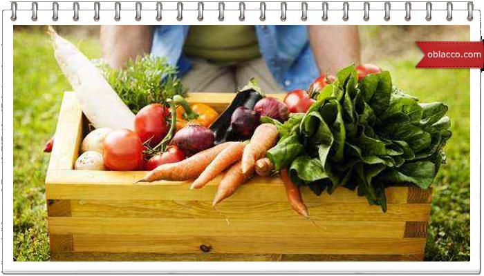 Морковь — самый полезный корнеплод