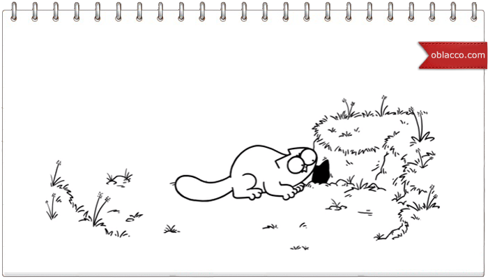 Simon's Cat. Игра