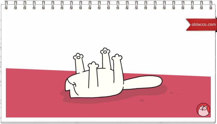 Йога для кота. Кот Саймона