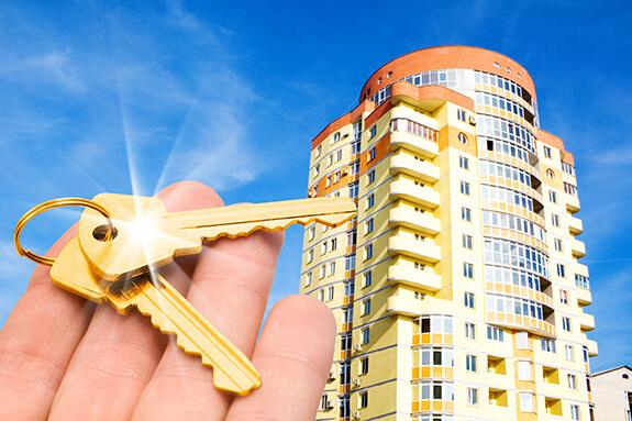 недвижимость в спб