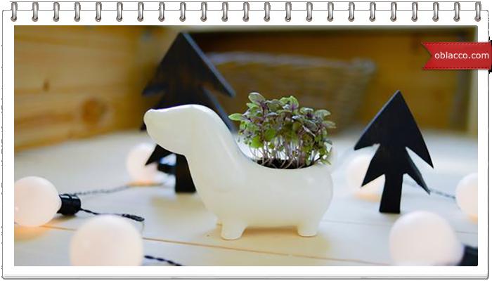 Плетеная вазочка с полукруглым дном в виде собачки