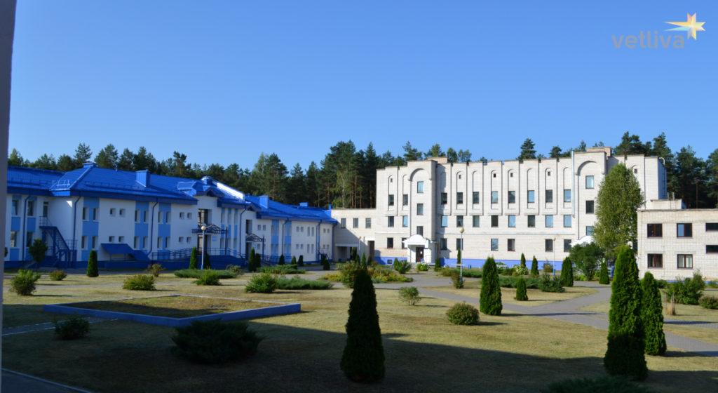Пляжный отдых и лечение в санатории Белоруссии Алеся