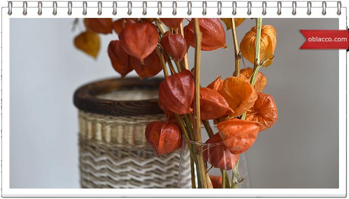 Интерьерная композиция из сухоцветов на старой книге