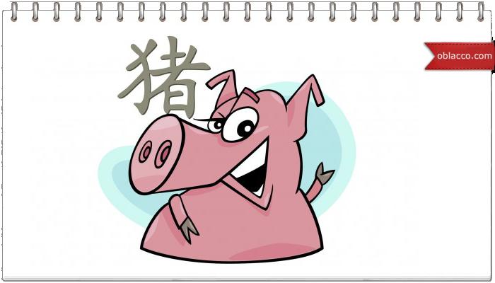 Как сплести свинью, символ года 2019
