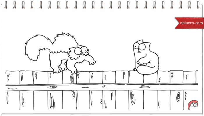 На заборе. Simon's Cat